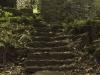Watersmeet Steps